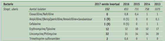 Tabel 1: Percentage uit melk gekweekte mastitisverwekkers die ongevoelig zijn voor antibiotica (2013 tot en met eerste kwartaal 2017). Percentage intermediair-gevoelige isolatem is toegevoegd tussen haakjes vanaf 5 procent (Bron: GD-LIMS)