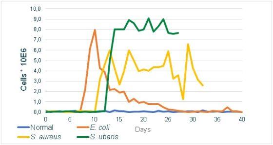 Grafiek 1: Verloop van celgetal na inoculatie van het uier met verschillende subklinische mastitis verwekkers, verkregen van Gröhn (2004) en Schukken (2009)